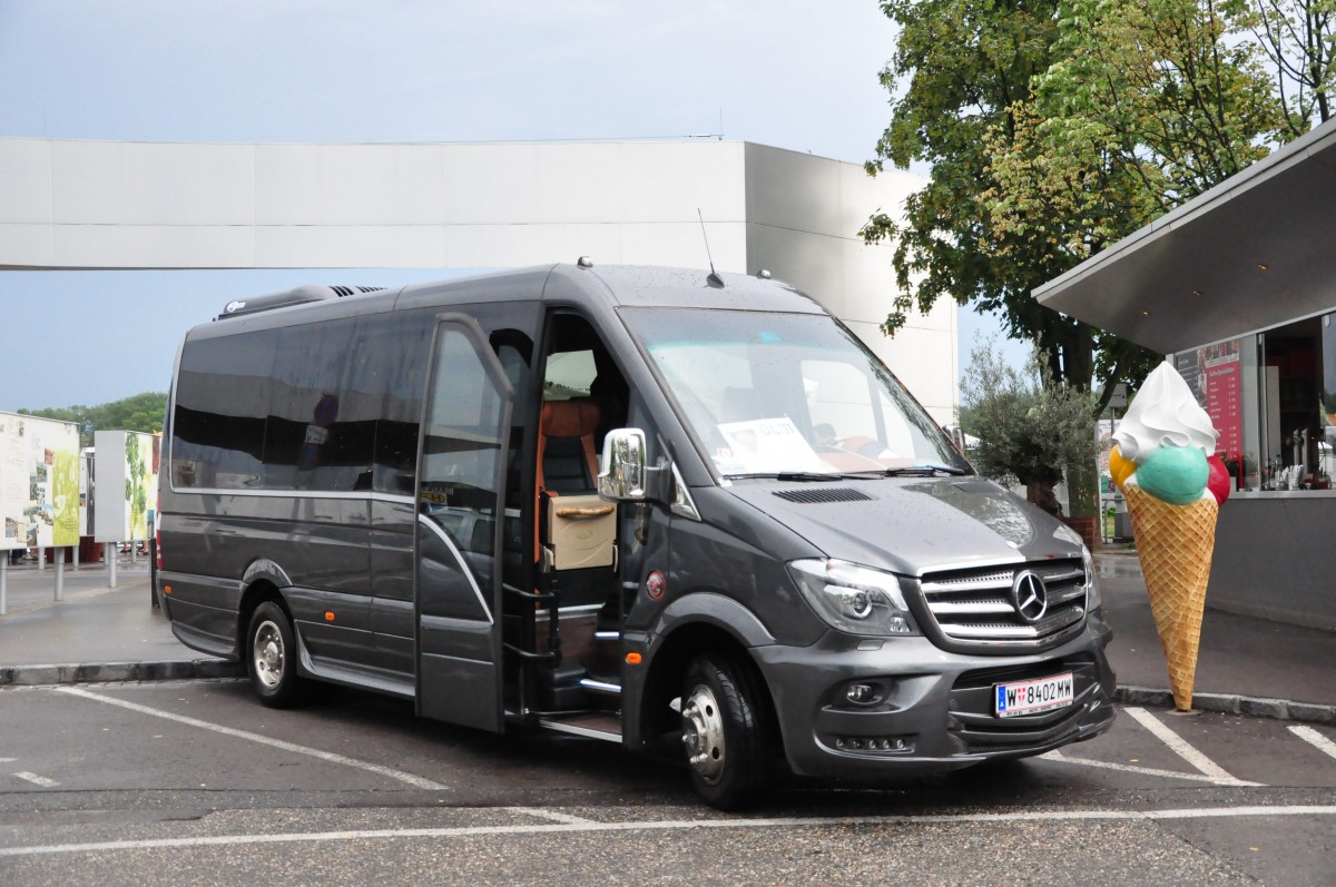 Kleinbus mercedes sprinter 519 bluetec aus wien im juni for Mercedes benz sprinter bluetec